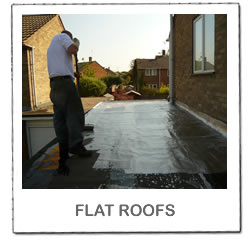 Flat Roof Gallery