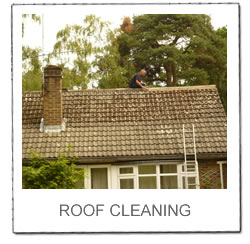 Roof Cleaning Gallery