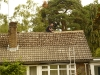 Before and After Roof Cleaning 1