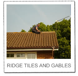View Ridge Tiles Services